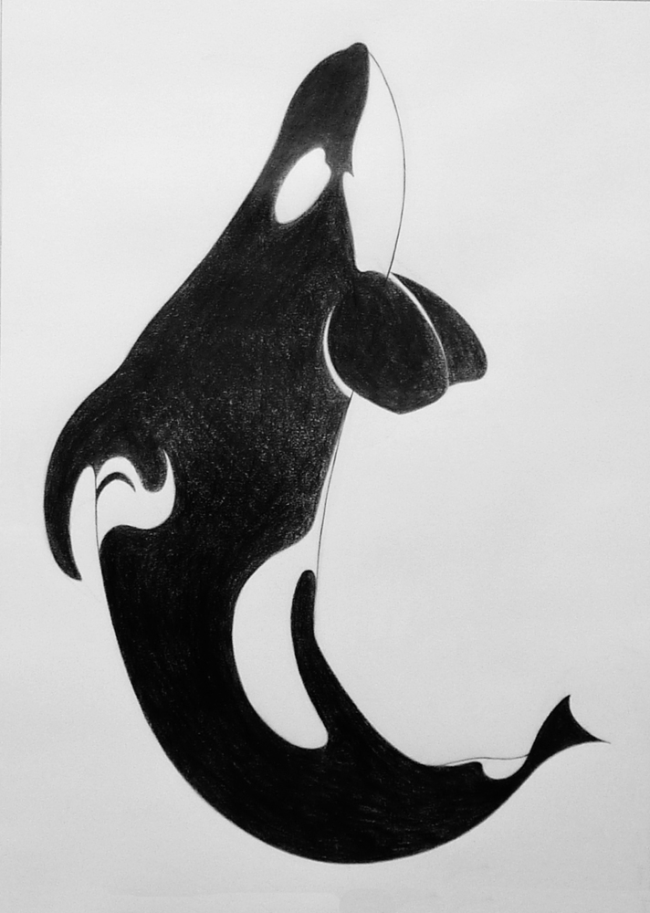 Orca Pod by Wetherdog on DeviantArt |Pod Of Orcas Drawing